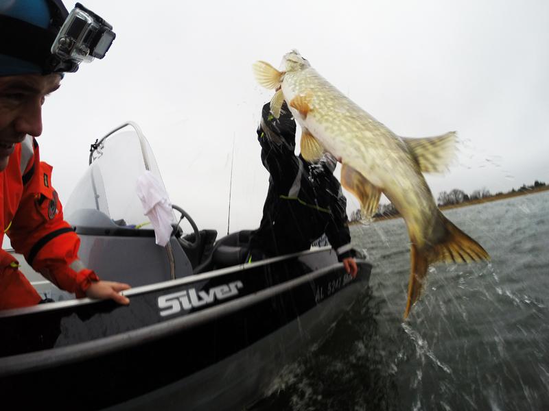 рыбалка в финляндии тур на 3 дня